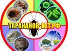 Фотография в Услуги компаний и частных лиц Разные услуги Московская санитарная служба 8 (903) 623-79-19, в Москве 1500