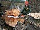 Просмотреть фотографию Строительство домов Удаление деревьев в стеснённых условиях 38275133 в Москве
