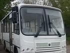 Скачать бесплатно фотографию Разное Автобус Паз,пригородный автобус,городской автобус,продажа автобусов 39207257 в Москве