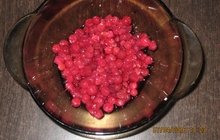 Принимаем заявки на ягоды