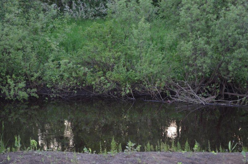 Рыбалка на реке кисловка томск