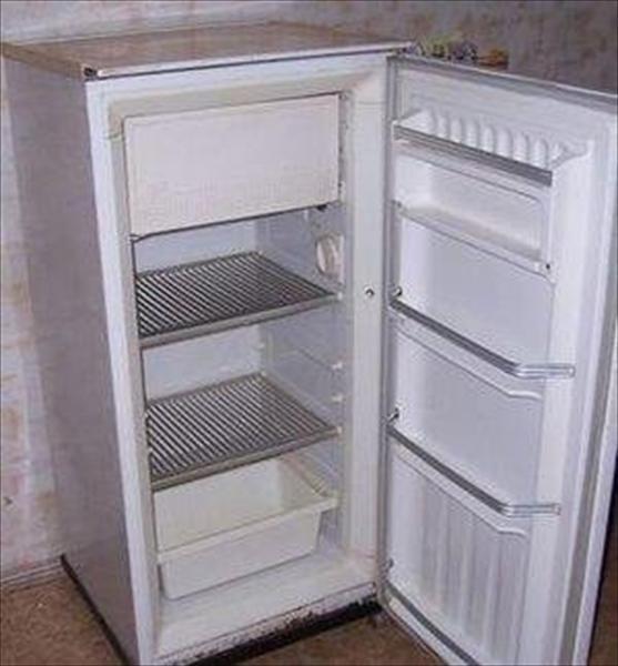 холодильник на рыбалку купить в спб