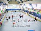 Скачать бесплатно изображение  Новый крытый каток в центре Новосибирска! 32708887 в Новосибирске