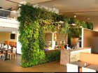 Фотография в   Студия фитодизайна GardenCity, предлагает в Москве 25000