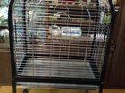 Фото в   Продам клетку для средних попугаев. Размеры в Москве 8000