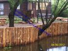 Скачать изображение  укрепление берега лиственницей 35897707 в Москве