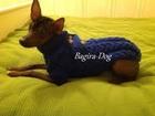 Фотография в Собаки и щенки Одежда для собак Предлагаем трикотажные изделия для Ваших в Москве 100