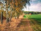 Изображение в Недвижимость Земельные участки Участок под КРС - 95 000 руб     Распродажа в Москве 95000