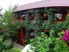 Фотография в   Гостевой дом Иволга из натурального дерева, в Феодосия 800