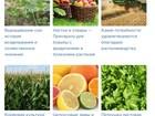 Новое фотографию  Портал растениеводства, животноводства и прочих видов аграрной промышленности 40378422 в Москве