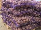 Просмотреть изображение Разные мясные продукты Картофель от 20 тонн,калиброванный! 42007769 в Москве