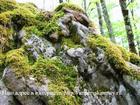 Смотреть фото  Природный камень и изделия из него от производителя 45322476 в Шахты