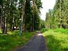 Новое foto  Земельные участки на берегу Горьковского водохранилища, 55970977 в Городце