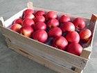 Новое foto Масло сливочное Яблоки калиброванные со склада 56112001 в Москве