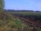 Просмотреть фотографию Земельные участки продам землю сельхозназначения 58760541 в Рязани