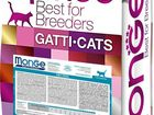 Увидеть изображение Корм для животных Корм для кошек и корм для котят Monge Cat, 10 кг 66476254 в Москве