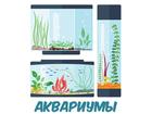 Скачать изображение  Магазин аквариумистики Hofish, Все виды работ, 67845283 в Москве
