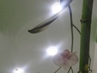 Скачать бесплатно фото  Натяжные потолки в Новосибирске 68769857 в Новосибирске