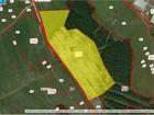 Увидеть фотографию Земельные участки Совхоз продает участок земли 55 га без посредников и скрытых комиссий, 69830104 в Москве
