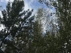 Просмотреть фото  Продается земельный участок 12,11 сот, , Раменский ГО, с, Софьино, 29 км от МКАД по Новорязанскому ш, 70773249 в Москве