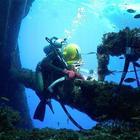 Водолазные услуги, подводные работы