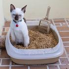 Наполнитель древесный для туалета животных