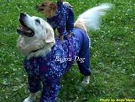Ателье для собак Открылось ателье по пошиву одежды для Ваших питомцев. Все работ