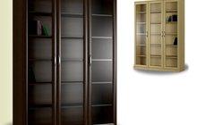 Книжный шкаф Библио