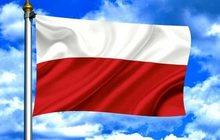 Русско-польский письменный и устный перевод в Брянске