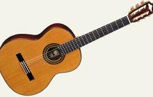 Индивидуальные уроки классической гитары