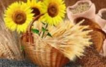 Минеральные удобрения, нефтепродукты, алюминий, растительные масла