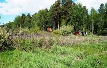 СНТ Курортник рядом с санаторием Урал во, у соснового бора