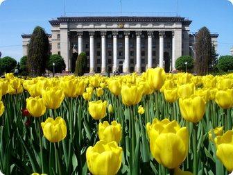 Увидеть фото  Весна в Казахстане! Сити Таун Алматы! 34470674 в Хабаровске