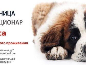 Новое foto Продажа домов УшиХвост- услуги для животных! 34481253 в Москве
