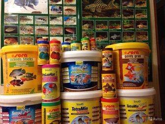 Увидеть фотографию  корма и оборудование Sera,Tetra, Eheim, Hagen 34891735 в Москве