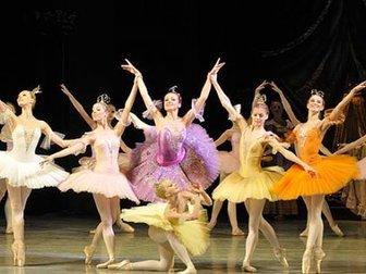 Скачать бесплатно изображение  Вечер академии русского балета 35782683 в Москве