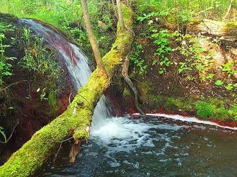Скачать foto  Продаётся участок 30, 3 га с прудом, ручейками и водопадом в собственность! 36227612 в Рязани