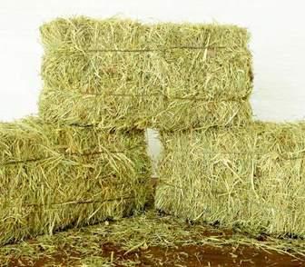 Фотография в   Реализуется отборное сено в тюках (брикетах) в Москве 10