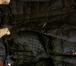 Фото в   Цвета в наличии: богатый темно-изумрудный в Москве 5000