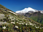 Смотреть foto Турфирмы и турагентства Экскурсии по Северному Кавказу, туры выходного дня 74193217 в Нальчике