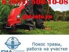 Свежее фото Помощь по дому Покос травы, работа на участке 38802475 в Наро-Фоминске