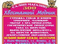 """Зоо салон-магазин Хвостатый Модник Зоо салон-магазин """"Хвостатый Модник""""  -стрижк"""