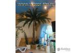 Скачать бесплатно foto Ландшафтный дизайн Искусственные пальмы по оптимальным ценам 39335523 в Нефтекамске