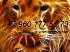 Изображение в Электрика Электрика (услуги) Электрик! Без посредников и в выходные!  в Нижнем Новгороде 200