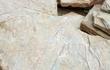 Плитняк мраморный – хорошо подходит для облицовки