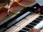 Изображение в Прочее,  разное Разное О настройщике пианино  Можете ли Вы представить в Новосибирске 800