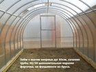 Уникальное фото Разное Теплица Дачница усиленная с шагом 65 см 32573251 в Новосибирске