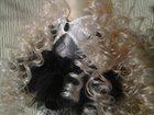 Фотография в Мебель и интерьер Другие предметы интерьера Текстильная кукла . Готовая работа. Выполнена в Новосибирске 0