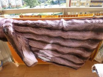 Смотреть фотографию  Шуба Голубой енот 37827729 в Новосибирске