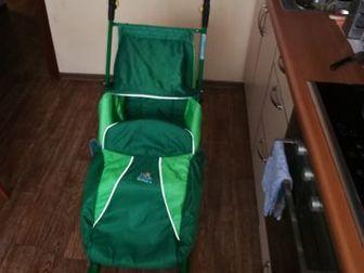 В хорошем состоянии,ездили два года,ребенку очень нравились,  Возможен торг первому покупателю)Состояние: Б/у в Новосибирске